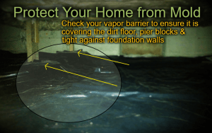 How to Protect Your Home from Mold in The Treasure Valley