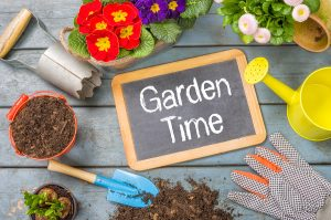 How to prepare and maintain a home garden in the treasure valley