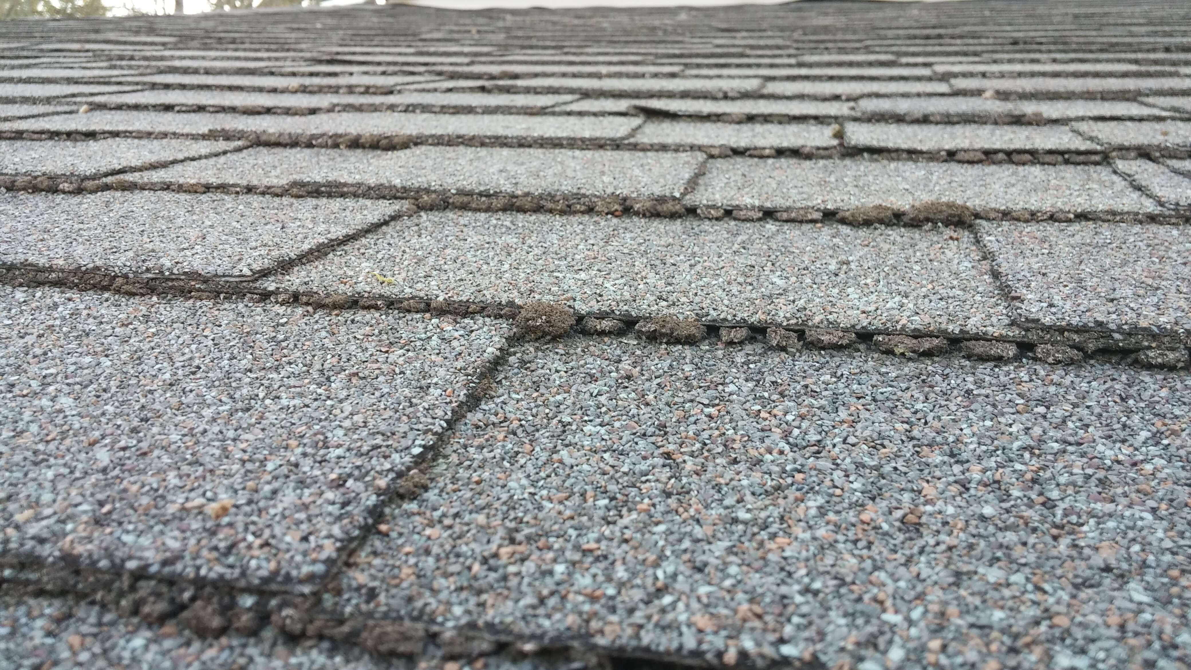 How to inspect your roof for damage in the treasure valley.